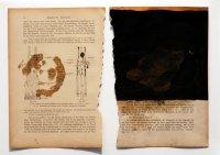 26,5x19 cm, Öl auf Papier